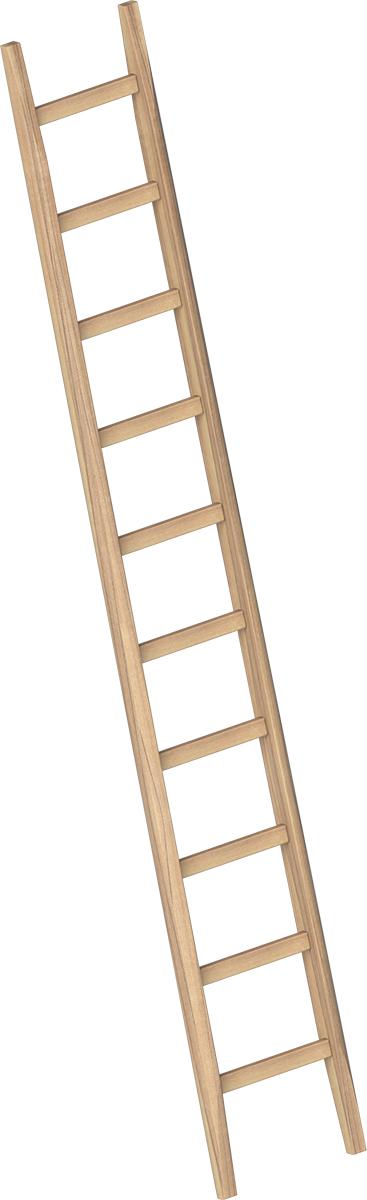 Layher Bau-Anlegeleiter Holz - 10 Sprossen