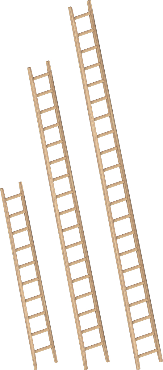 Layher Bau-Anlegeleiter Holz - Sprossen