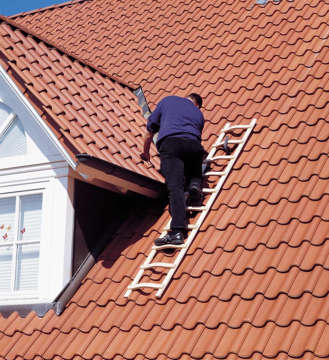 euroline Dachdeckerauflegeleiter Holz Sprossen