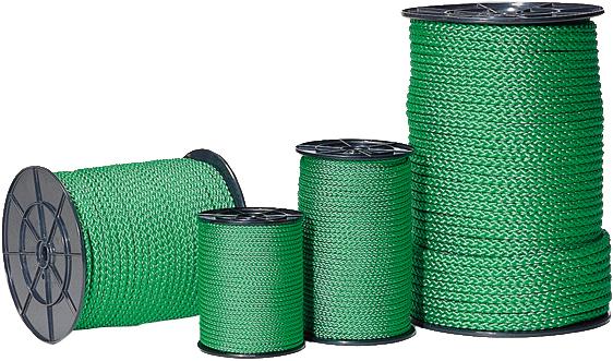 Flechtleine grün