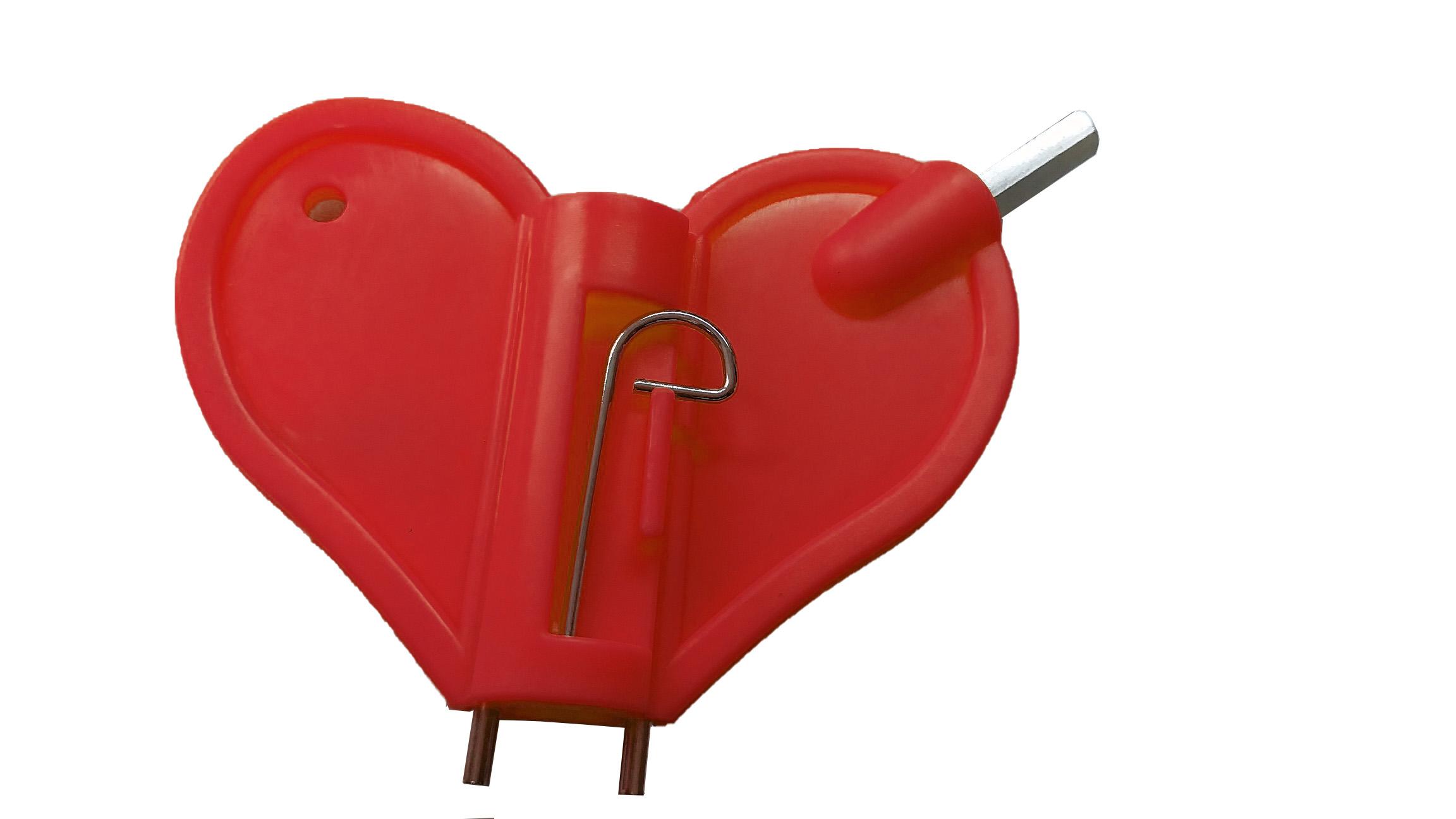 Schake Ersatz-Schlüssel für Baustellen-Warnleuchten